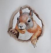 1_squirrel