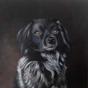 stabyhoun-oil-painting-front
