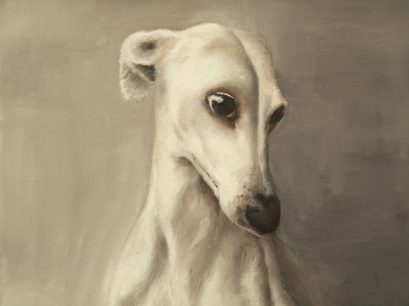 greyhound oilpainting