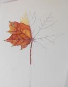 autumn-leaf-1