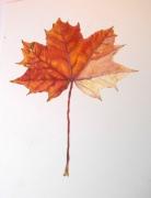 autumn-leaf-2