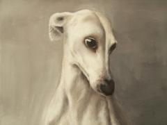 greyhound oilpainting