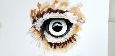 oog-uil