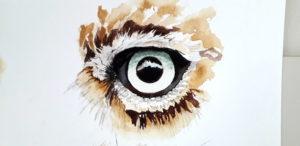 owl eye aquarel